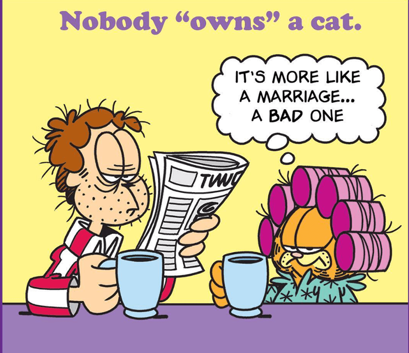 Garfield the cat comics | Nobody owns cat S MORE LIKE MARRIAGE BAD ONE funny illustration of Garfield and Jon looking tired and scruffy in the morning curlers reading newspaper over coffee