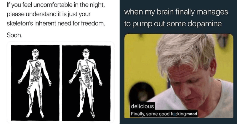 Funny random memes, dank memes, stupid memes, funny memes, web comics | If feel uncomfortable night, please understand is just skeleton's inherent need freedom. Soon. | my brain finally manages pump out some dopamine delicious Finally, some good fucking mood Chef Gordon Ramsay