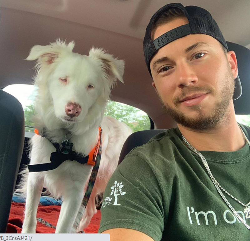 Man Documents His Daily Life With a Blind And Deaf Dog | beautiful white dog with a pink nose sitting in the backseat of a car while her owner takes a selfie