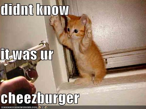 Cheezburger Image 1176638720