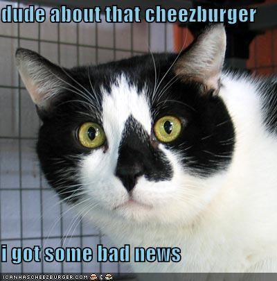 Cheezburger Image 1176934656
