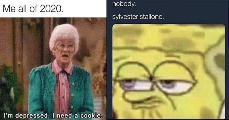 Funny random memes | Golden Girls all 2020 depressed need cookie. | nobody: sylvester stallone: Spongebob Squarepants making a funny face