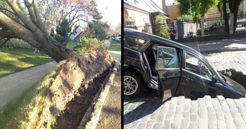moments of chaos, failure and misfortune | entire chunk of grass and dirt including a grown tree pulled out from the ground | car half sunk inside a giant hole in the road