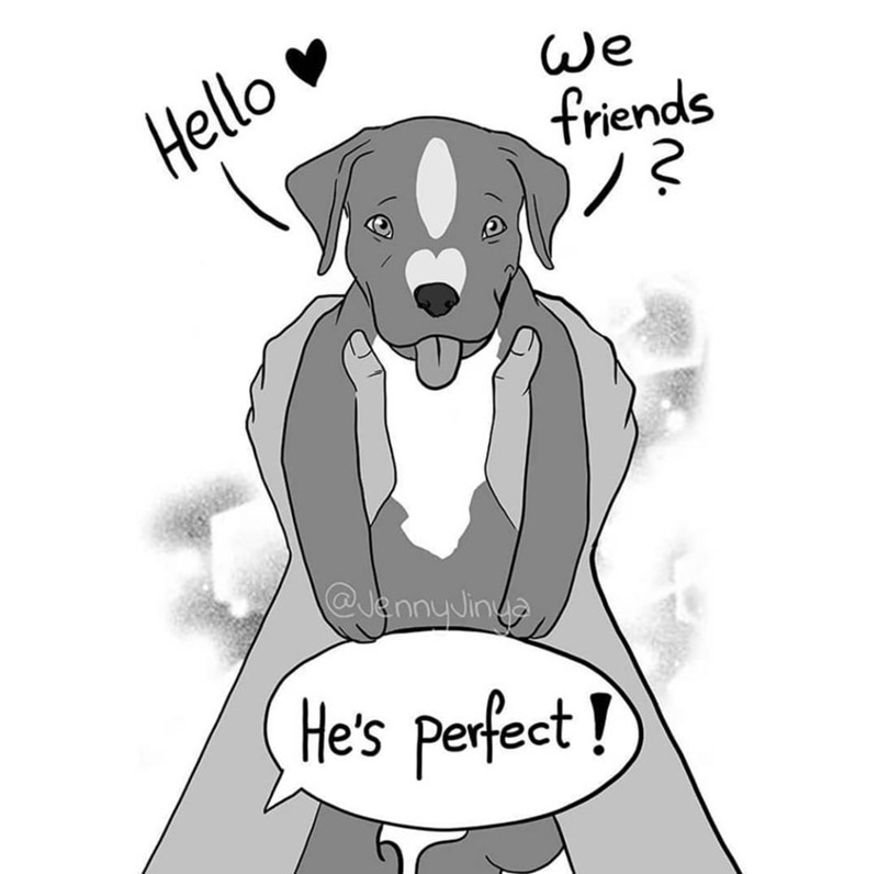 jenny jinya dog fighting dogs animals abuse sad heartbreaking reaper death comics illustrations stories adopt | drawing of a puppy being held up by human hands Hello We friends @lennyJing He's perfect !