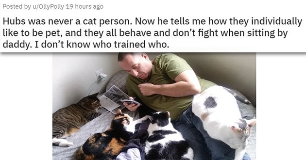 father's day dads pets wholesome aww animals cats dogs uplifting adorable cute | Posted by u/OllyPolly 19 hours ago Hubs never cat person. Now he tells they individually like be pet, and they all behave and don't fight sitting by daddy don't know who trained who.