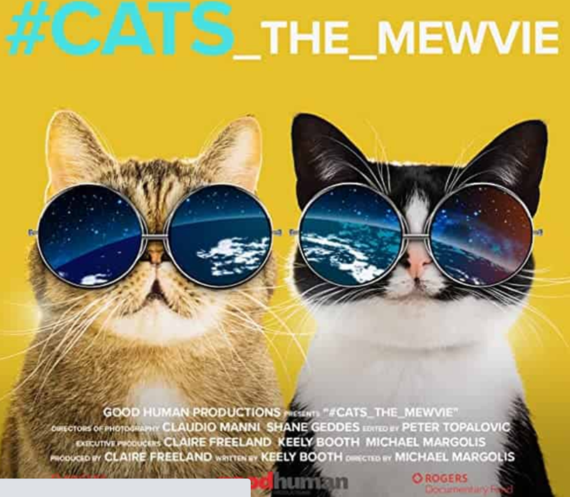 "Cat documentaries | two cats wearing round sunglasses reflecting earth from space #CATS _THE_MEWVIE GOOD HUMAN PRODUCTIONS N CATS THE_MEWVME"" OUIECTORS PHOTORAY CLAUDIO MANNI SHANE GEDDES EDTED ev PETER TOPALOVIC CUTIVE Pooucns CLAIRE FREELAND KEELY BOOTH MICHAEL MARGOLIS RODUCD r CLAIRE FREELAND wartEN BY KEELY BOOTH oCTED e MICHAEL MARGOLIS human O ROGERS Docinentary R"