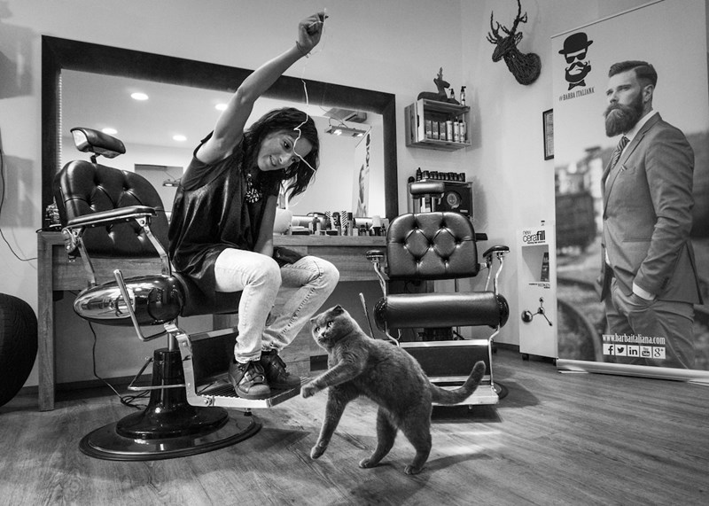 Candid Photos Of Cats In Working Places | black and white monochrome photo of a woman at a hair salon sitting in a barber chair holding up a string playing with a cat