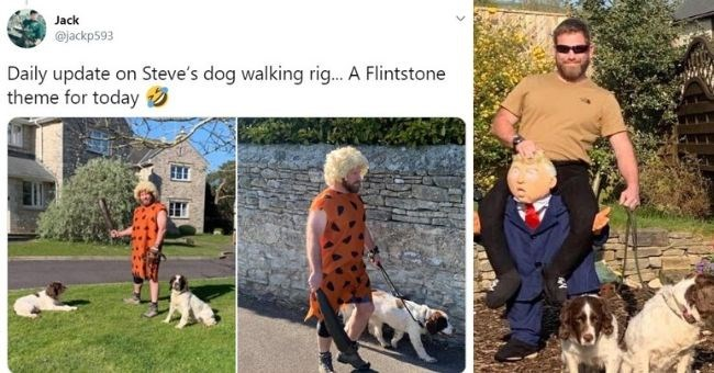 tweet of walking his dog in different costumes Flintstones and Donald Trump | Jack @jackp593 Daily update on Steve's dog walking rig Flintstone theme today | man riding Donald Trump while walking two dogs