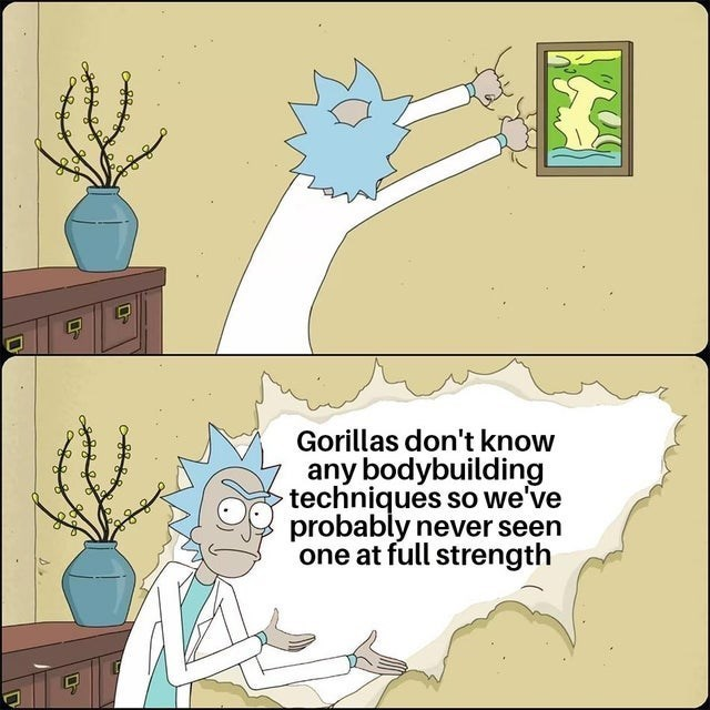 top ten 10 dank memes daily | Rick and Morty ripping off the wallpaper de Gorillas don't know any bodybuilding techniques so probably never seen one at full strength