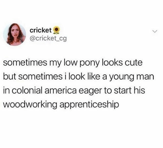 top oddly specific memes | Person - cricket @cricket_cg sometimes my low pony looks cute but sometimes look like young man colonial america eager start his woodworking apprenticeship