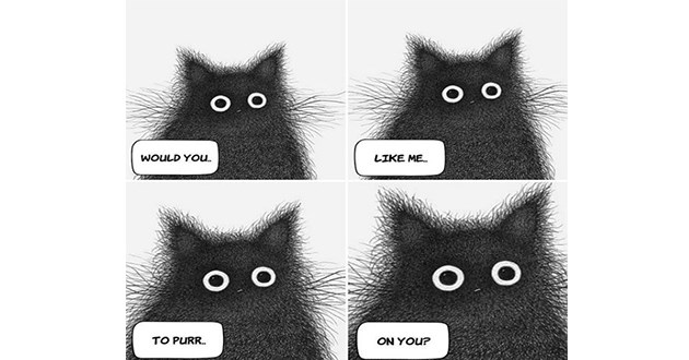 black cats comics ink cat art artist animals funny cute thoughts interesting calming | O O O O WOULD LIKE O O O O PURR ON YOU? fuzzy drawing of a cat with large round eyes