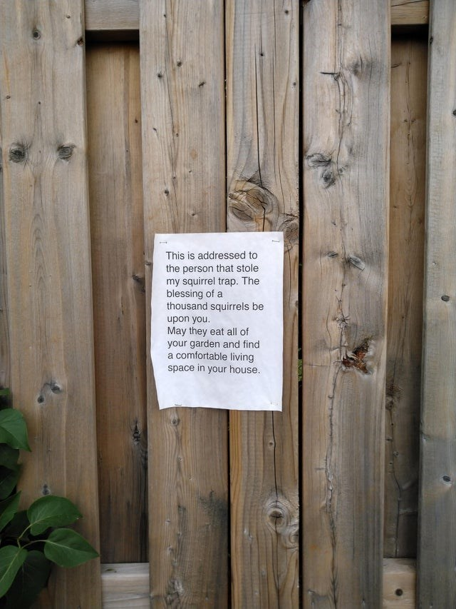 top ten 10 funny signs weekly | paper stapled to a fence This is addressed person stole my squirrel trap blessing thousand squirrels be upon May they eat all garden and find comfortable living space house.