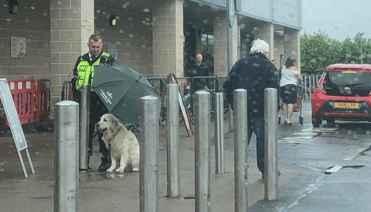 Store Security Guard Goes Viral For Offering Umbrella To a Wet Dog Caught In The Rain | person in vest holding an umbrella over a dog while it's raining