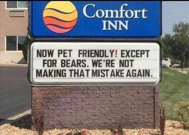 funny list of oddly specific memes | Window - Comfort INN NOW PET FRIENDLY! EXCEPT BEARS NOT MAKING MISTAKE AGAIN.