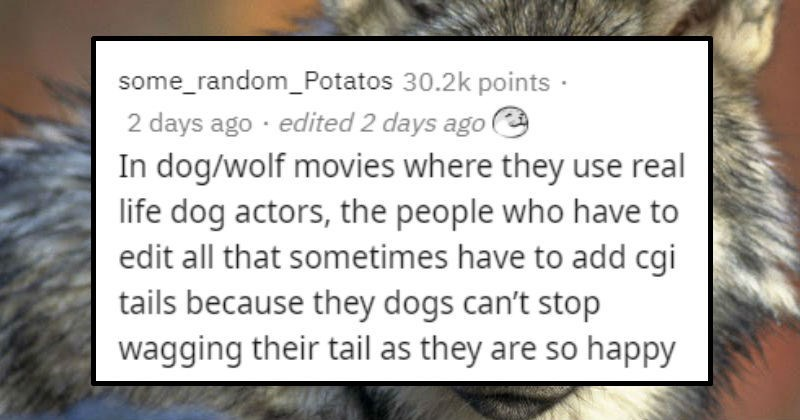 Nice and happy facts | some_random_Potatos 30.2k points 2 days ago edited 2 days ago e dog/wolf movies where they use real life dog actors people who have edit all sometimes have add cgi tails because they dogs can't stop wagging their tail as they are so happy