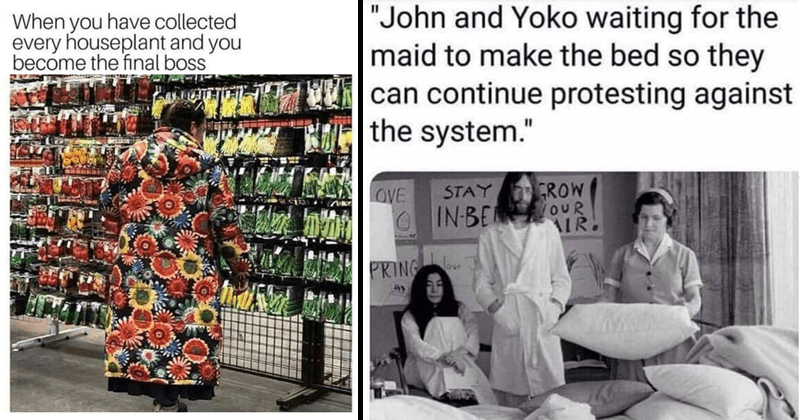 funny random memes | have collected every houseplant and become final boss person in floral coat at the vegetables isle in a grocery store | John and Yoko waiting maid make bed so they can continue protesting against system