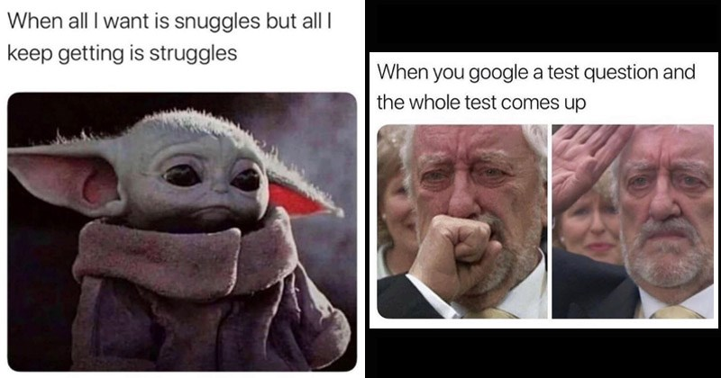 Funny random memes | Baby Yoda all want is snuggles but all keep getting is struggles | google test question and whole test comes up Doctor Who Wilfred crying