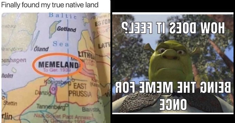 Funny memes about memes | Finally found my true native land Baltic ESTON Gotland Sea LATV sratg VÖland LITHU USS penhagen MEMELAND Ger 1938 holm Konigsberg EAST n Danzig PRUSSIA Vil Stettin Tannenberg Nax Soet Pact Arnexe Ges Biasto rlin y Gcary 1939 | how does it feel being the meme for once Shrek looking down at the viewer