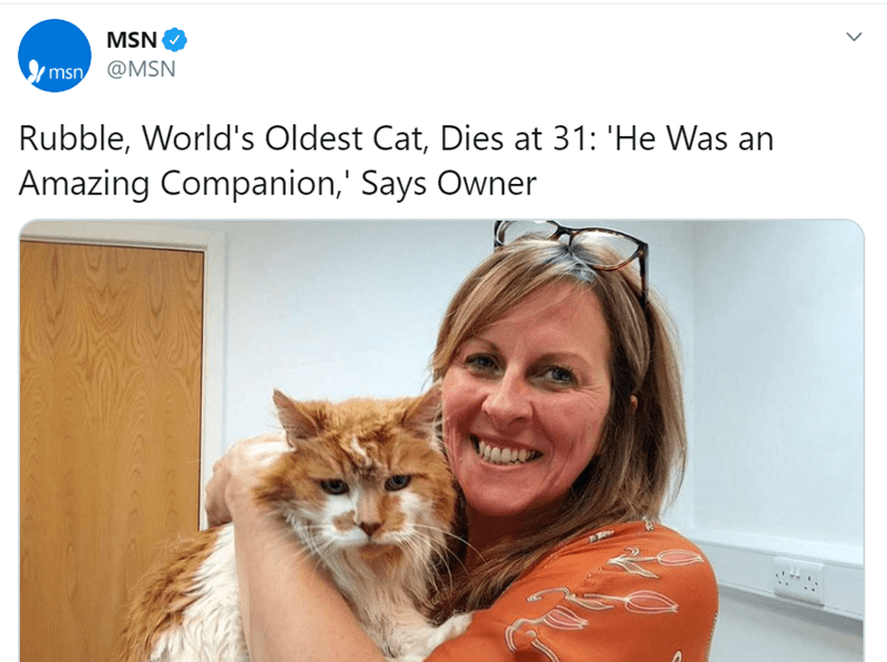 Rubble, World's Oldest Cat, Dies at 31 | MSN 'msn @MSN Rubble, World's Oldest Cat, Dies at 31 He an Amazing Companion Says Owner woman hugging an orange and white cat