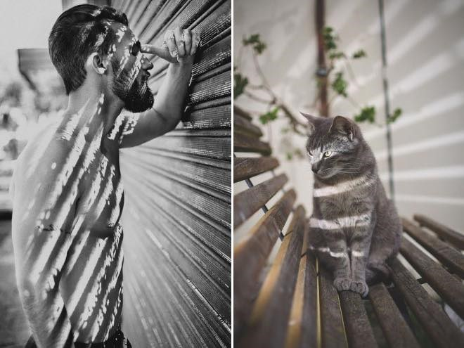 Cats That Can Easily Become Fabulous Male Models | shirtless model lit by shutters and a cat sitting on a bench being hit with light in a similar way