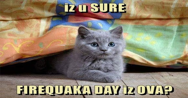 lolcats cats funny memes lol cat cute aww adorable animals animal meme | iz u SURE FIREQUAKA DAY OVA? lolcat speech cute kitten hiding under blanket