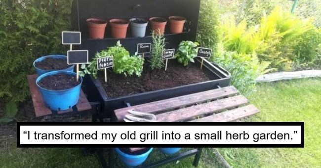 pictures of old stuff being upcycled into new stuff - cover pic of an old grill transformed into a herb garden | I transformed my old grill into a small herb garden. I hope all the seeds will grow soon
