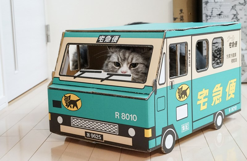 "Japan's Largest Delivery company Is Called ""Black Cat"" And It Delivers Mini Cat Trucks 