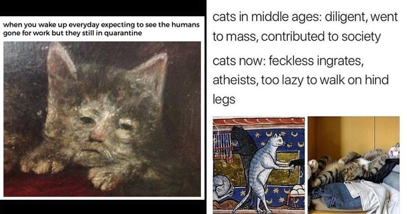 Funny cat memes made out of medieval paintings | wake up everyday expecting see humans gone work but they still quarantine | cats middle ages: diligent, went mass, contributed society cats now: feckless ingrates, atheists, too lazy walk on hind legs