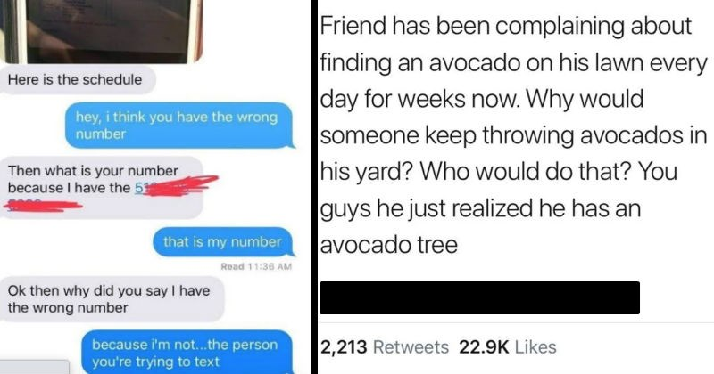 A collection of moments that made us facepalm | Snee ee Thusds Jewant il Here is schedule hey think have wrong number Then is number because have 51 is my number Read 11:36 AM Ok then why did say have wrong number because not person trying text | Friend has been complaining about finding an avocado on his lawn every day weeks now. Why would someone keep throwing avocados his yard? Who would do guys he just realized he has an avocado tree 8:51 PM 8/22/19 Twitter iPhone 2,213 Retweets 22.9K Likes