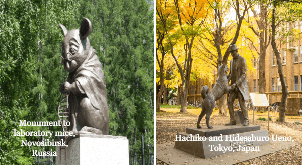 Bronze Metal Tributes To Heroic Animals | Monument to laboratory mice, Novosibirsk, Russia statue of a mouse wearing glasses and a robe | Statue of Hachiko and Hidesaburo Ueno, Tokyo, Japan dog standing up to greet a man