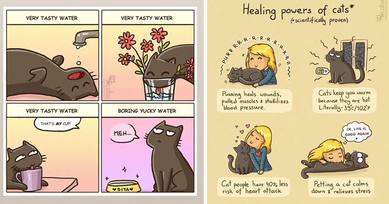Cute cat comics | VERY TASTY WATER VERY TASTY WATER VERY TASTY WATER BORING YUCKY WATER THATS MY CUP! MEH VDITAV catsu | Healing powers cats scientifically proven) R-R-R 39 o Purring heals wounds, pulled muscles e stabilizes 'blood pressure. Cats keep warm because they are hot. Literally-39c/102'F OK, LIFE IS GOOD AGAIN Cat people have 40% less risk heart attack Petting cat calms down g°relieves stress PURR. RR-R -R-R-R. catsu catsuthecat.com