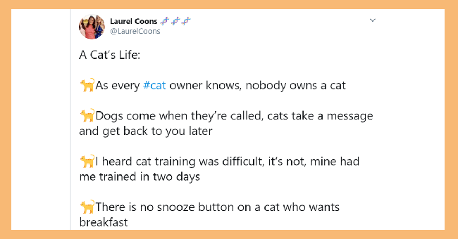 The Real Truth About Being a Cat Owner (Relatable Tweets) | ONT Tou ya girl @yagirlsaidthat KUR FAC one my fav parts about owning cat is other people who own cats send pictures their cat(s) and all like secret cat society where communicate exclusively about and through our cats 10:48 pm 28 Aug 2019 Twitter Web App