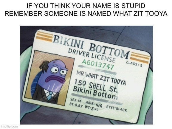 top ten 10 spongebob squarepants memes of the week | IF THINK NAME IS STUPID REMEMBER SOMEONE IS NAMED ZIT TOOYA EBIKINI BOTTOM DRIVER LICENSE CLASS: S A6013747 MR. ZIT TOOYA 150 SHELL St. Bikini Bottom SEX:M HAIR: N/ EYES:BLACK HT:0.07 WT:Sz imgfip.com