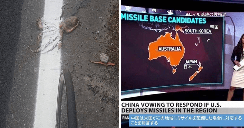 funny fails, you had one job, not my job, japan, japanese fails | painting road marks over a dead squid's body | MISSILE BASE CANDIDATES SOUTH KOREA AUSTRALIA JAPAN CHINA VOWING RESPOND IF U.S. DEPLOYS MISSILES REGION IRAN 101