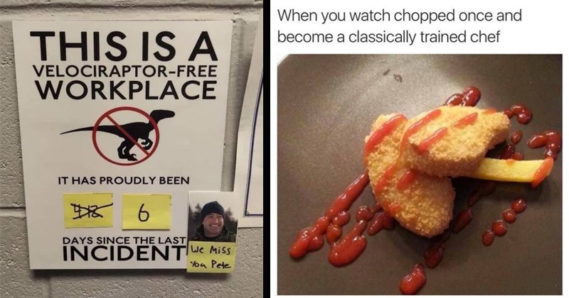 Funny random memes | THIS IS VELOCIRAPTOR-FREE WORKPLACE HAS PROUDLY BEEN 6. DAYS SINCE LAST INCIDENT Miss you Pete | watch chopped once and become classically trained chef ketchup on chicken nuggets and fries