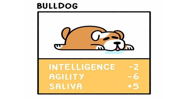 dog pup stats comics dogs aww doggo cute funny lol | BULLDOG INTELLIGENCE -6 -2 AGILITY SALIVA +5 cartoon drawing of a dog lying on its belly sleeping and salivating