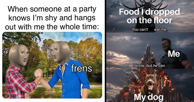 Funny random memes, gaming memes, dog memes, video games, dank memes, wholesome memes, anime memes, wholesome tweets, relatable memes | someone at party knows shy and hangs out with whole time: frens Meme Man handshake | Thor Ragnarok Food dropped on floor can't eat know, but he can. My dog