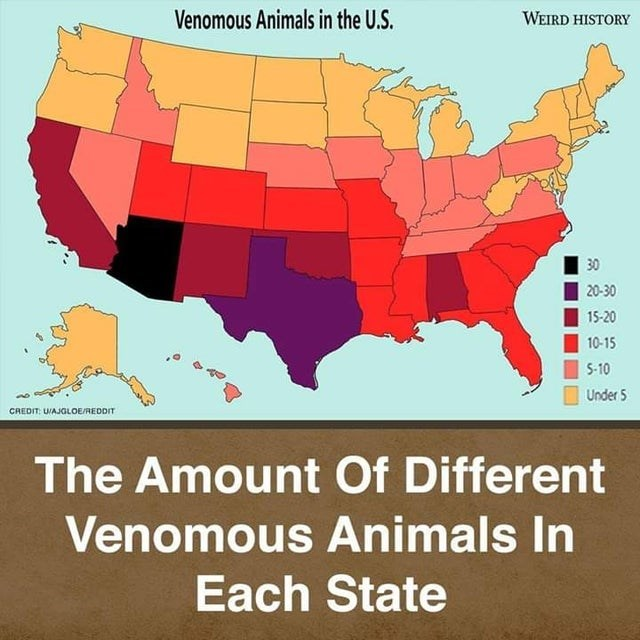 top ten daily infographics guides | Animal - Venomous Animals U.S. WEIRD HISTORY 30 20-30 15-20 10-15 5-10 Under 5 CREDIT: UAJGLOE/REDDIT Amount Different Venomous Animals Each State