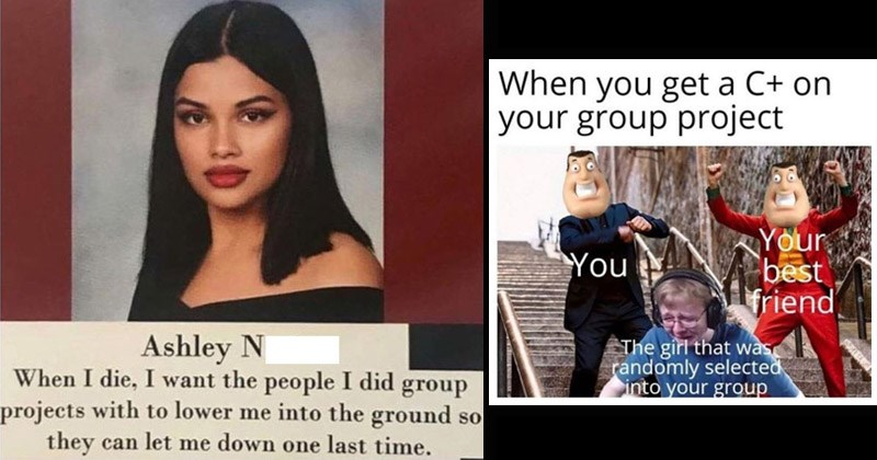 Funny dank memes about people who did all the work during group projects in school | Ashley Narine die want people did group projects with lower into ground so they can let down one last time. | get C+ on group project best friend girl randomly selected into group
