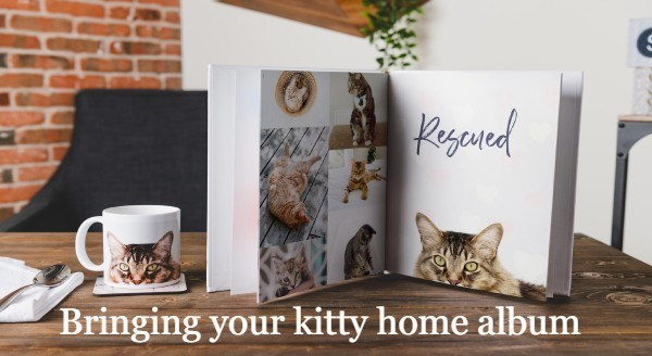 Beautiful Photo Album Ideas For Cat Lovers | Bring your kitty home album Rescued book with photos of a cat at different stages of life and a matching mug