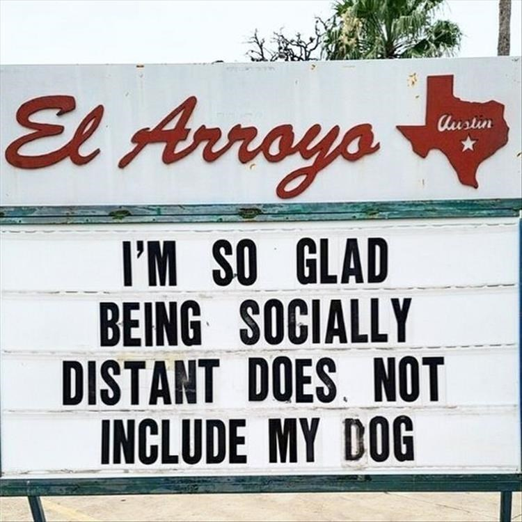 Fresh animal memes | El Arroyo Austin SO GLAD BEING SOCIALLY DISTANT DOES. NOT INCLUDE MY DOG