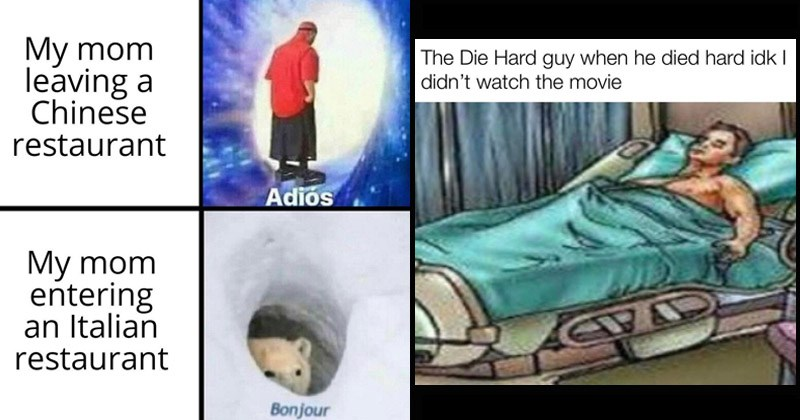 Funny dank memes from /r/DankMemes | My mom leaving Chinese restaurant Adiós walking into a wormhole My mom entering an Italian restaurant Bonjour polar bear | Die Hard guy he died hard idk didn't watch movie man in a hospital bed with a boner