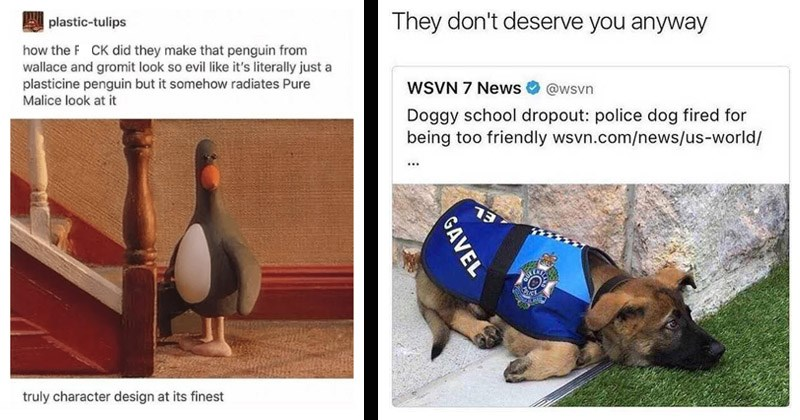 Funny random memes | plastic-tulips FUCK did they make penguin wallace and gromit look so evil like 's literally just plasticine penguin but somehow radiates Pure Malice look at truly character design at its finest | They don't deserve anyway @wsvn WSVN 7 News Doggy school dropout: police dog fired being too friendly wsvn.com/news/us-world/ 13 GAVEL