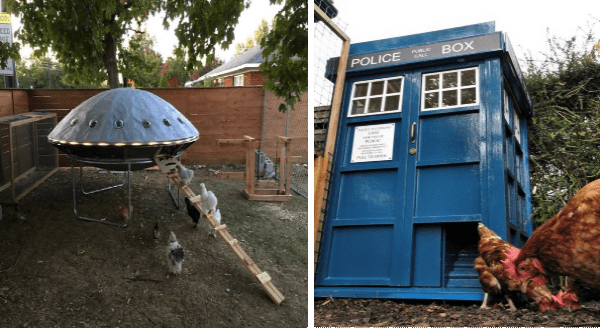 Creative Chicken Coops | tiny alien spaceship in a backyard with chickens climbing into it | Doctor Who inspired TARDIS phone booth blue police box