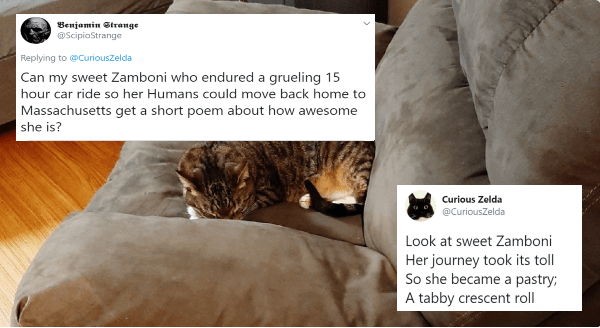 People Are Asking Zelda The Cat To Write Poems About Their Kitties And She Delivers | Curious Zelda @CuriousZelda Jul 1 Look at sweet Zamboni Her journey took its toll So she became pastry tabby crescent roll Benjamin Strange @ScipioStrange Jun 30 Replying CuriousZelda Can my sweet Zamboni who endured grueling 15 hour car ride so her Humans could move back home Massachusetts get short poem about awesome she is