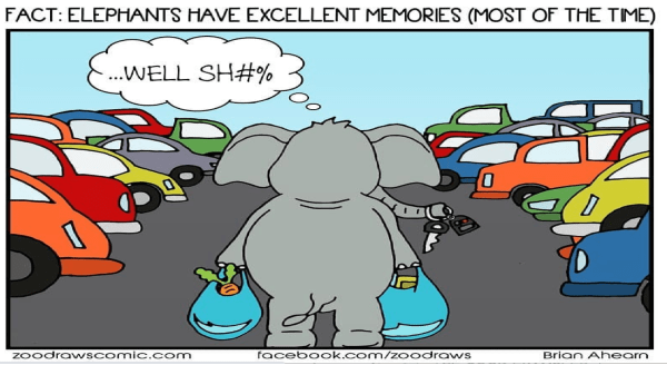 Animals Facing Modern Life Problems (Comics) | FACT: ELEPHANTS HAVE EXCELLENT MEMORIES MOST TIME WELL SH Zoodrawscomic.com facebook.com/zoodraws Brian Ahearn elephant carrying shopping bags lost in a parking lot