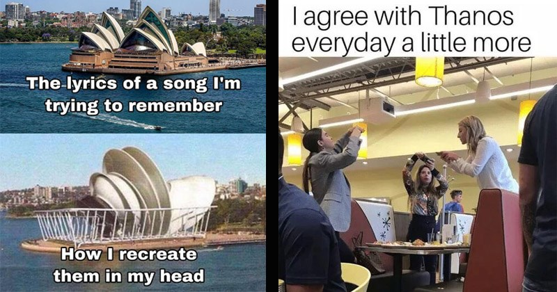 Funny random memes | lyrics song trying remember recreate them my head Sydney Opera House | agree with Thanos everyday little more women standing around a table at a restaurant taking pics of their food