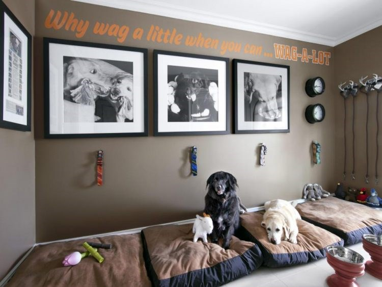 Inspirational Rooms Loving Pet Owners Have Designed For Their Furry Friends