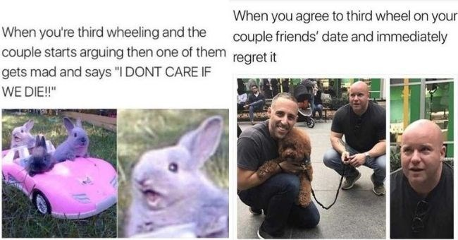 funny memes about third wheeling in the car | third wheeling and couple starts arguing then one them gets mad and says DONT CARE IF DIE three bunnies in a toy car | agree third wheel on couple friends' date and immediately regret