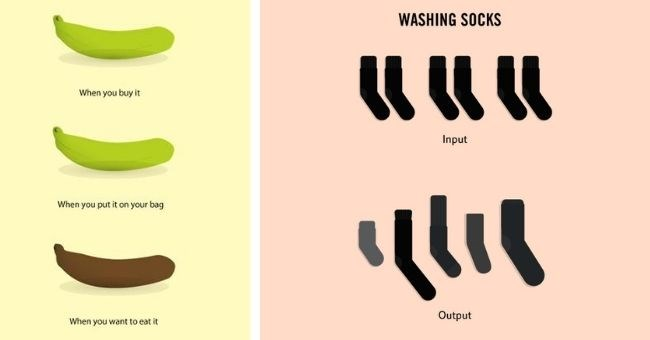 illustrations showing weird facts about life - cover pic illustration of bananas going old and socks getting lost in wash | buy put on bag want eat | WASHING SOCKS Input Output